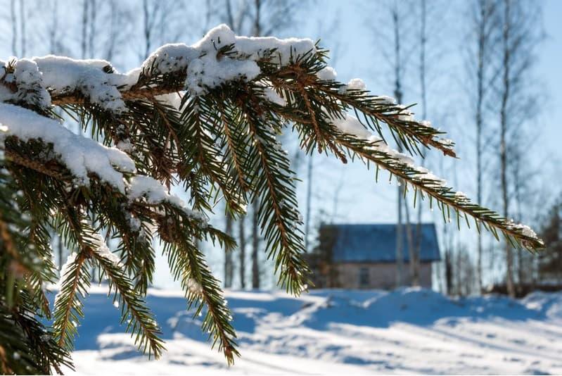 Новогоднее предложение на земельные участки